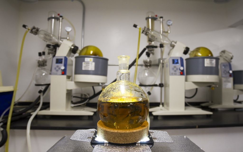 Cannabis Concentrate Lab