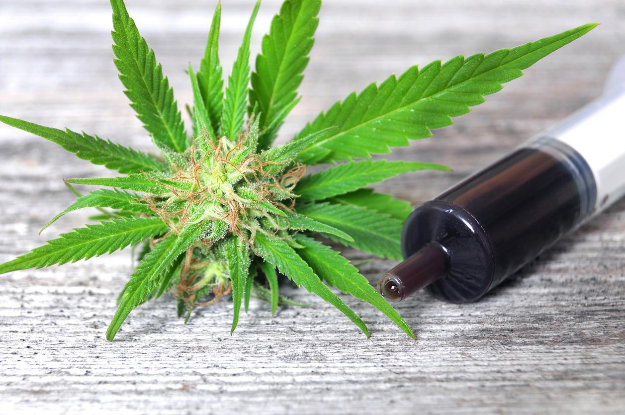 Medical Cannabis Syringe